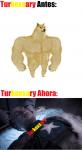 Turkoxsary antes y despues.png